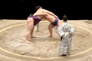 Sumo Kampf in Japan